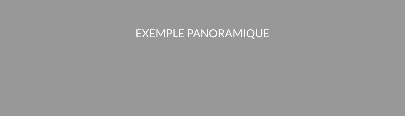 panoramique-standard